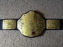 Authentic WWE World Title in Camp Lejeune, North Carolina