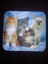 NEW Kitten mousepad in Camp Lejeune, North Carolina